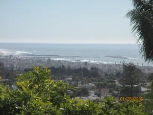 Monita view